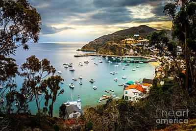 Sunrise On Catalina Island Avalon Bay California Poster by Paul Velgos