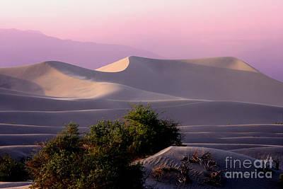 Sunset Dune Poster by Varinia Blyth