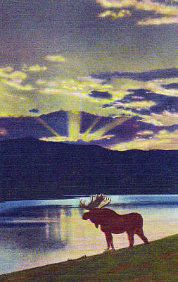 Sunset Over Mountains With Bull Moose Poster by Steven Covieo