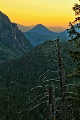 Nisqually River Valley Sunset Poster by Dan Sproul