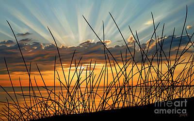 Sunset Thru The Grass Poster by Sue  Brehant
