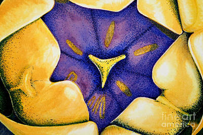 Sunshine Yellow Tulip Poster by Ann Sokolovich