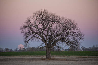 Supermoon Rise Poster by Aaron J Groen
