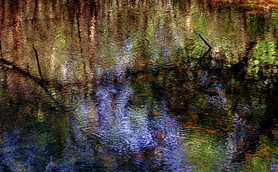 Swamp Abstract Poster by Greg Mimbs