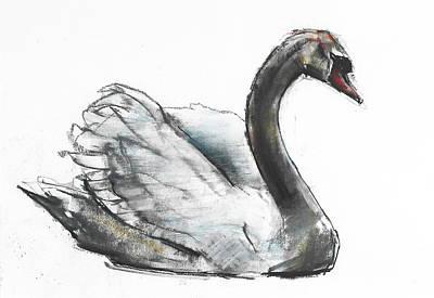 Swan Poster by Mark Adlington