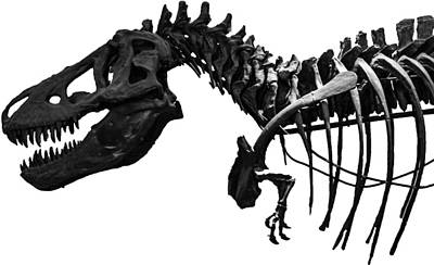 T-rex Poster by Martin Newman