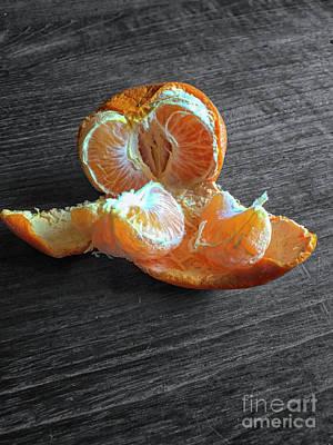 Tangerine Poster by Patricia Hofmeester