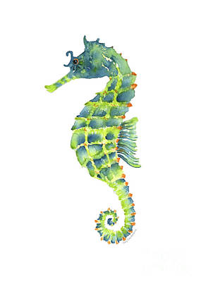 Teal Green Seahorse Poster by Amy Kirkpatrick