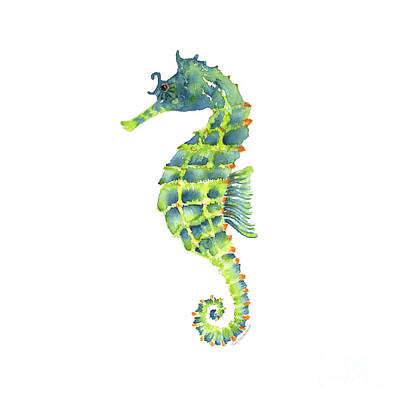 Teal Green Seahorse - Square Poster by Amy Kirkpatrick