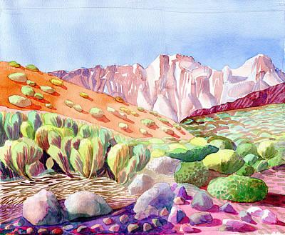 Teide Plateau Tenerife  Poster by Elizabetha Fox