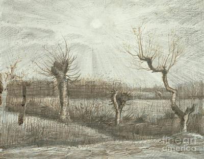 Tetards  Pollards Poster by Vincent Van Gogh