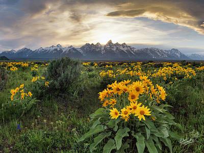 Teton Spring Poster by Leland D Howard