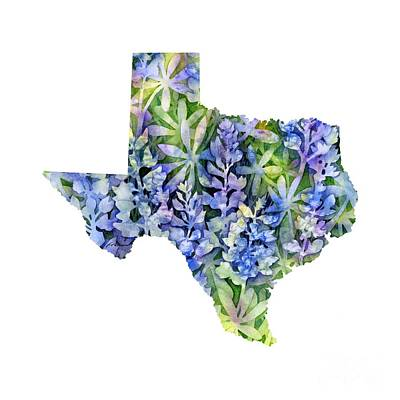 Texas Blue Texas Map On White Poster by Hailey E Herrera