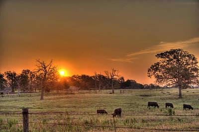 Texas Sunrise Poster by Barry Jones