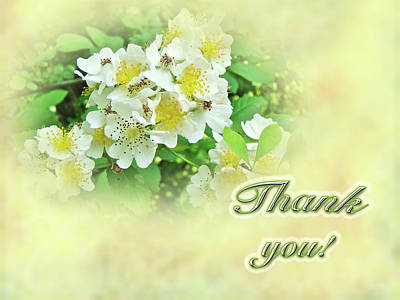 Thank You Card - Multiflora Roses Poster by Mother Nature