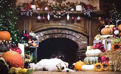 Thanksgiving Holiday Fireplace With Dog Poster by Linda Phelps