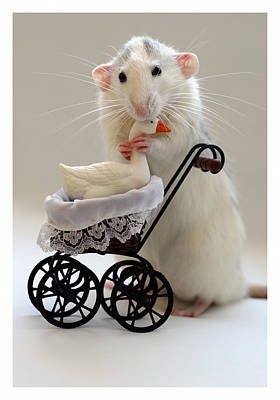 The Babysitter Poster by Ellen Van Deelen