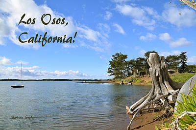 The Bay At Los Osos Califronia Poster by Barbara Snyder