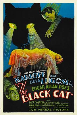The Black Cat, Boris Karloff, Harry Poster by Everett