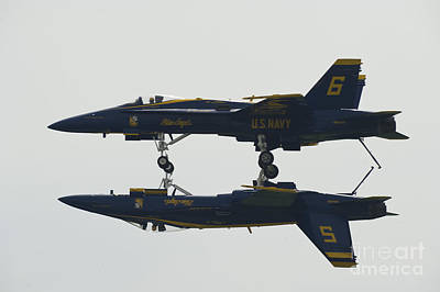 the Blue Angels perform the Fortus Maneuver  Poster by Celestial Images
