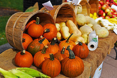 The Fall Harvest Is In Kendall Square Farmers Market Poster by Toby McGuire