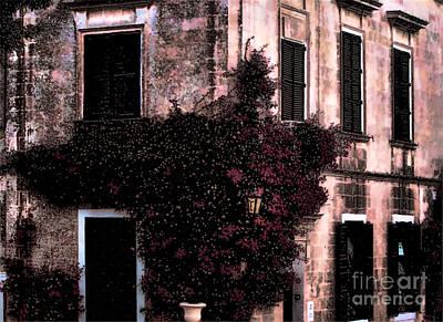 The Flower Shop Malta Poster by Tom Prendergast