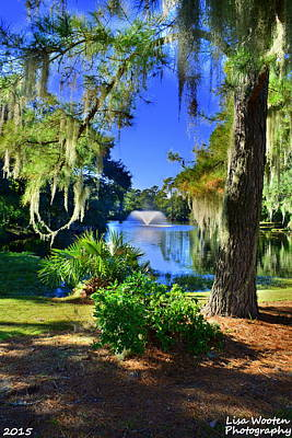 The Gardens At Legare Waring House Charles Towne Landing Sc Poster by Lisa Wooten