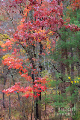 The Glory Of Fall Poster by Roberta Byram