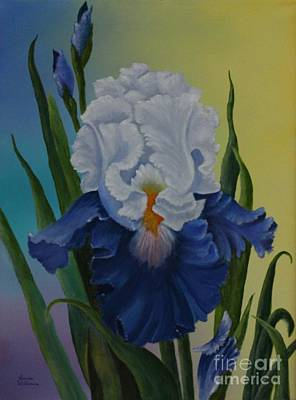 The Grand Tennesee Iris Poster by Louise Williams