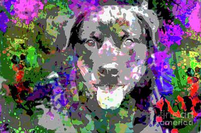 The Happy Rottweiler Poster by Jon Neidert
