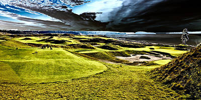 The Only Tree On The Chambers Bay Course - #15 Poster by David Patterson