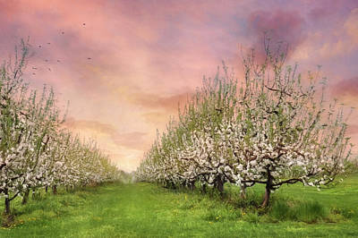 The Orchard Poster by Lori Deiter