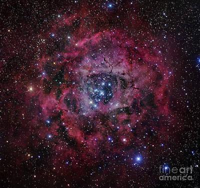 The Rosette Nebula Poster by Robert Gendler