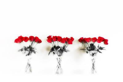 Three Dozen Roses Poster by Scott Pellegrin