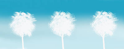 Three White Trees Poster by Art Spectrum