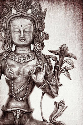 Tibetan Tara Poster by Tim Gainey