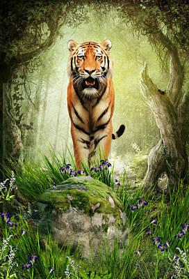 Tiger Woods Poster by Julie L Hoddinott