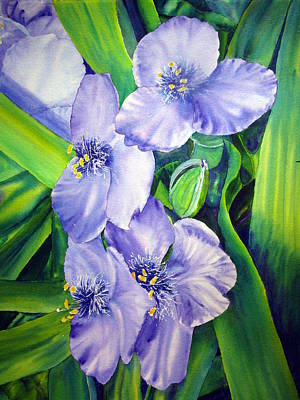 Time In The Sun As A Spiderwort Poster by Joann Perry