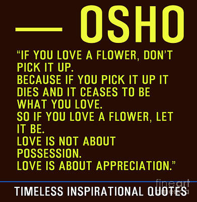 Timeless Inspirational Quotes - Osho Poster by Celestial Images