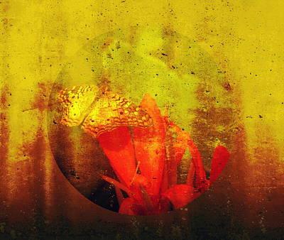 Translucent Poster by Lisa S Baker