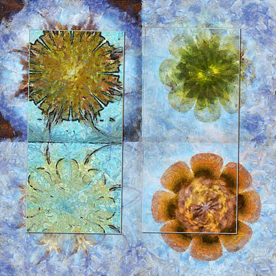 Travelogues Configuration Flower  Id 16165-223109-65251 Poster by S Lurk