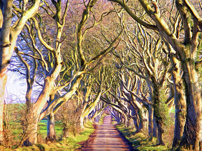 Tree Tunnel In Afternoon Sun Poster by Dominic Piperata