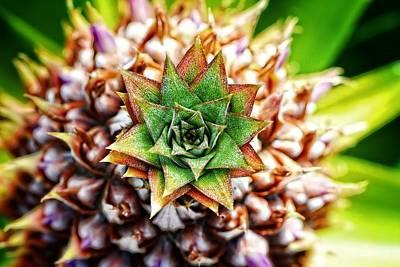 Tropical Art - Pineapple Punch - Sharon Cummings Poster by Sharon Cummings