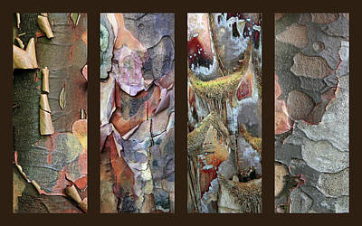 Tropical Bark Collage Poster by Jessica Jenney