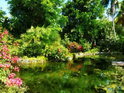 Tropical Garden By Lake Poster by Susan Savad