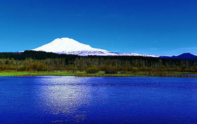 Trout Lake Foreground Mount Adams Poster by Jeff Swan