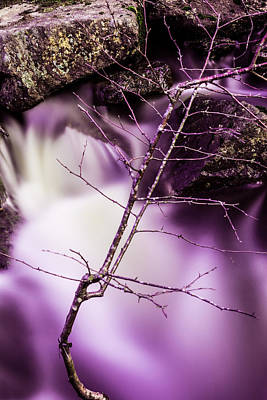 Twig At The Waterfall In Hdr Poster by Toppart Sweden