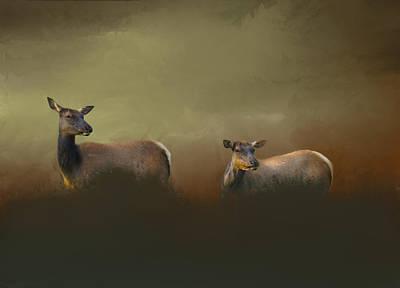 Two Deers Poster by Art Spectrum