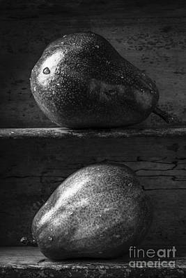 Two Ripe Pears In Black And White Poster by Edward Fielding