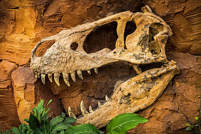 Jurassica Poster by Wim Lanclus